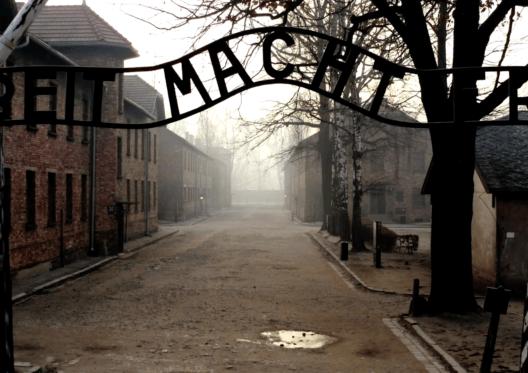 Infiltré à Auschwitz, sélectionné au Festival International du Film d'Histoire de Pessac